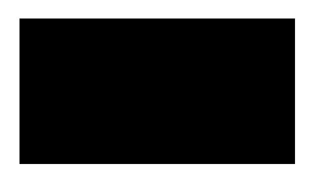 LaRodia-noir
